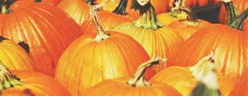 fêtes aux usa halloween