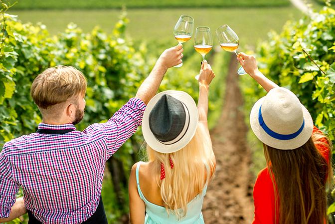 deguster vin californien